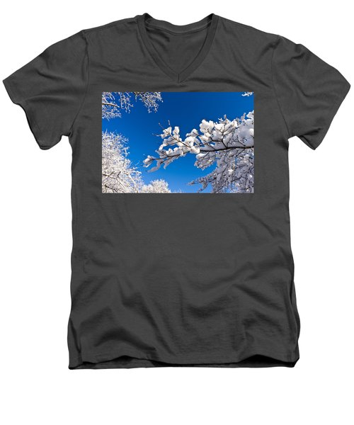 Snowy Trees And Blue Sky Men's V-Neck T-Shirt
