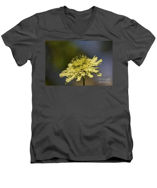Men's V-Neck T-Shirt featuring the photograph Soft Yellow. by Clare Bambers
