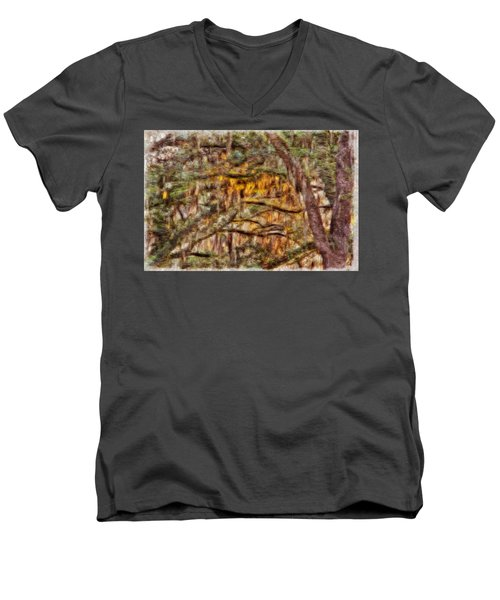 Spanish Moss And Sunset Men's V-Neck T-Shirt by Tom Culver