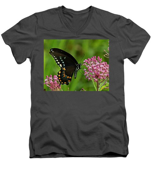 Spicebush Swallowtail Din039 Men's V-Neck T-Shirt