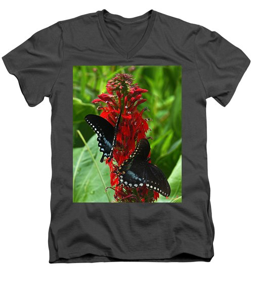 Spicebush Swallowtails Visiting Cardinal Lobelia Din041 Men's V-Neck T-Shirt