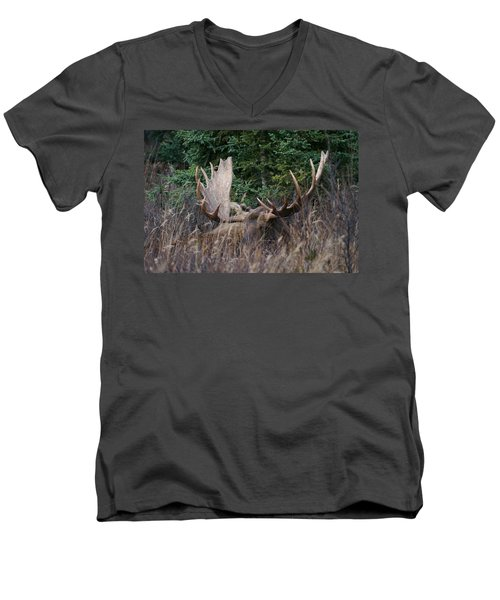 Men's V-Neck T-Shirt featuring the photograph Splendor In The Grass by Doug Lloyd