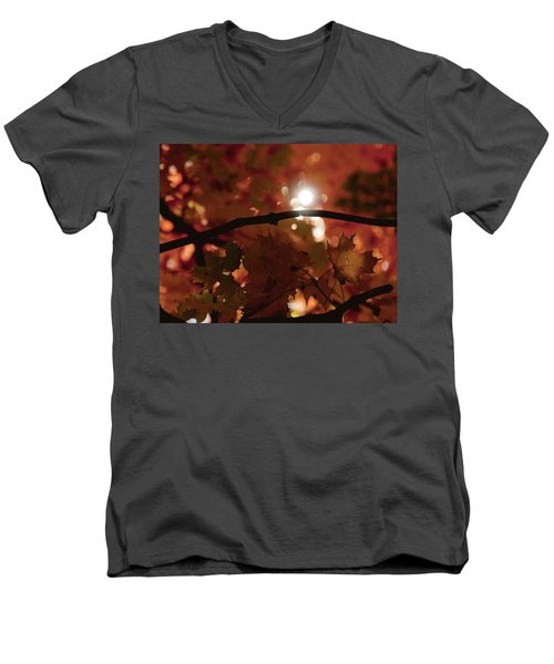 Men's V-Neck T-Shirt featuring the photograph Spotlight On Fall by Cheryl Baxter