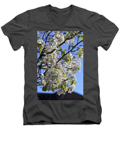 Men's V-Neck T-Shirt featuring the photograph Spring Blooms by Kay Novy