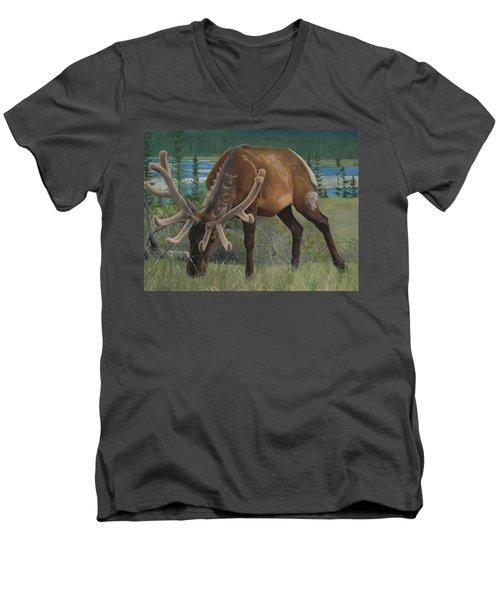 Spring Gazing Men's V-Neck T-Shirt