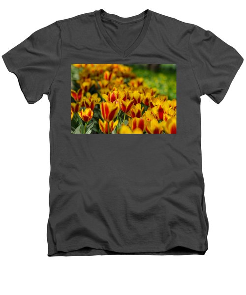 Spring Mood Men's V-Neck T-Shirt