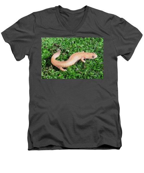 Spring Salamander Men's V-Neck T-Shirt by Ted Kinsman