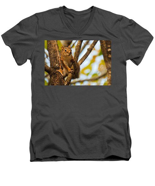 Men's V-Neck T-Shirt featuring the photograph Squirrel On High by Cheryl Baxter