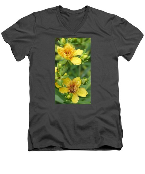 Men's V-Neck T-Shirt featuring the photograph St John's-wort by Bruce Bley