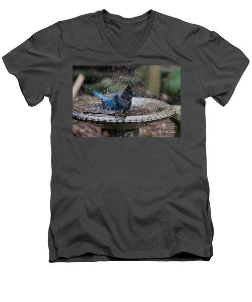 Stellar Jay In The Birdbath Men's V-Neck T-Shirt by Carol Ailles