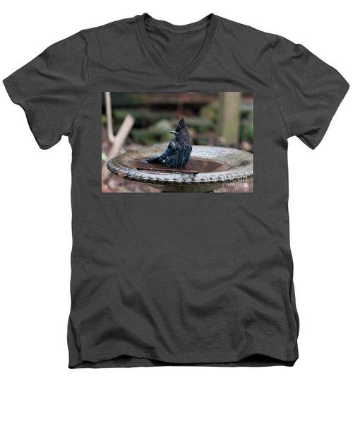 Steller Jay In The Birdbath Men's V-Neck T-Shirt by Carol Ailles