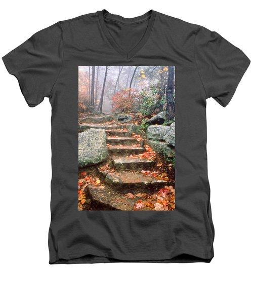 Steps Cloudland Canyon Men's V-Neck T-Shirt