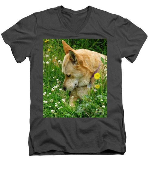 Stop And Smell The Clover Men's V-Neck T-Shirt