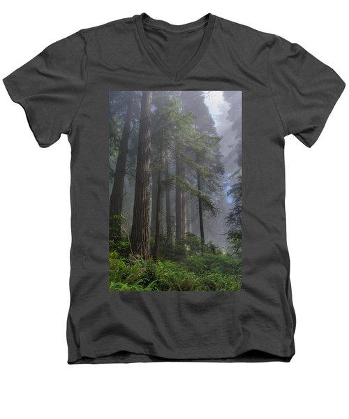 Sun Breaking On Redwoods Men's V-Neck T-Shirt