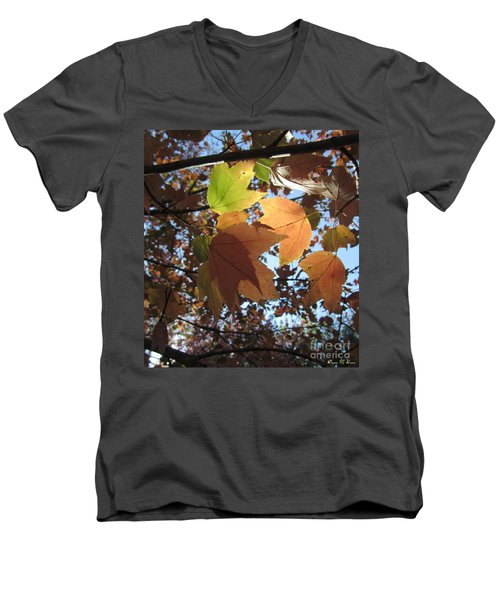Men's V-Neck T-Shirt featuring the photograph Sun-lite Fall Leaves by Donna Brown