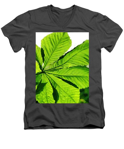 Men's V-Neck T-Shirt featuring the photograph Sun On A Horse Chestnut Leaf by Steve Taylor
