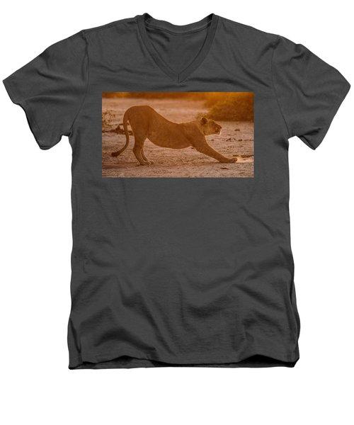 Sun Stretch Men's V-Neck T-Shirt