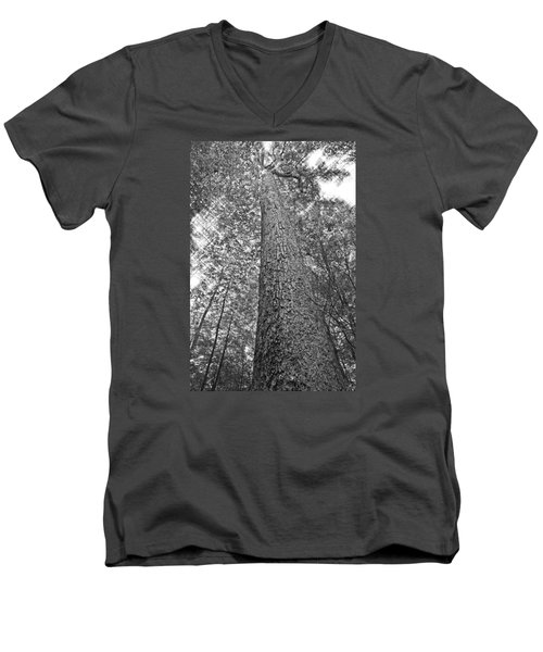 Men's V-Neck T-Shirt featuring the photograph Tall Tree With Sunshine by Susan Leggett
