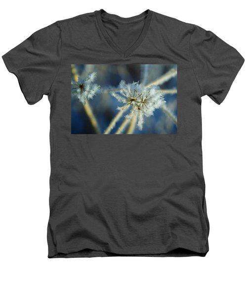 The Beauty Of Winter Men's V-Neck T-Shirt