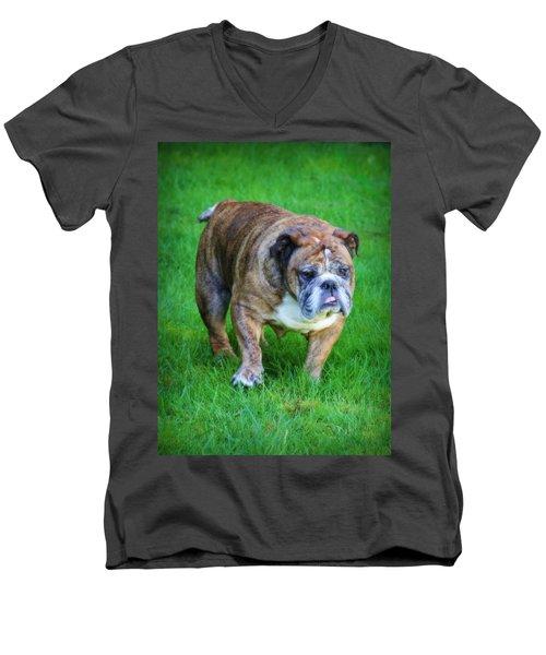 The Bulldog Shuffle Men's V-Neck T-Shirt by Jeanette C Landstrom