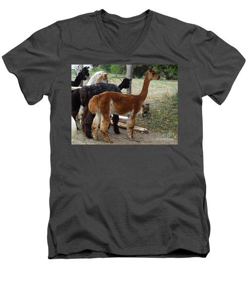 The Cat Came Back Men's V-Neck T-Shirt by Laurel Best