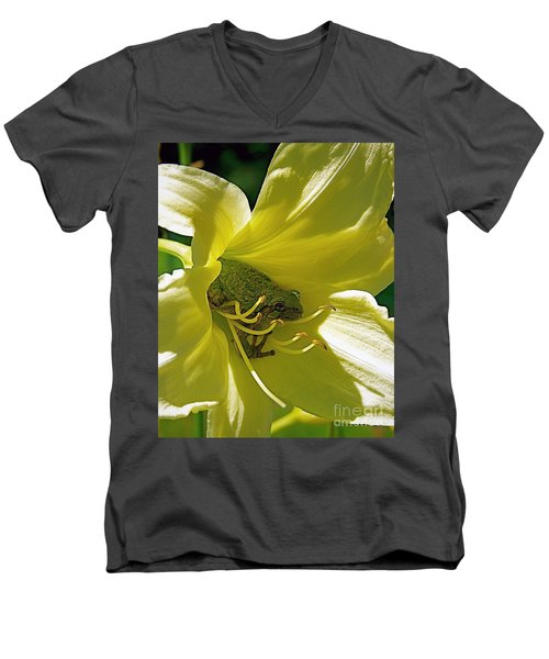The Day Lily Met Her Prince Men's V-Neck T-Shirt by Sue Stefanowicz