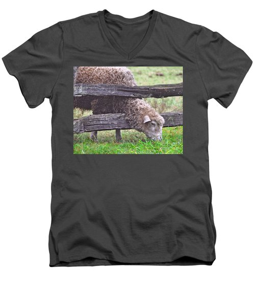 Men's V-Neck T-Shirt featuring the photograph The Grass...on The Other Side by Lydia Holly