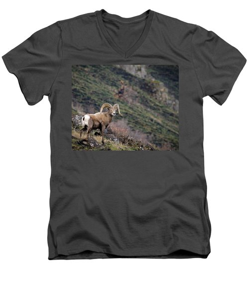 Men's V-Neck T-Shirt featuring the photograph The Overlook by Steve McKinzie