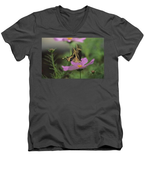 Tiger Swallowtail Butterfly Men's V-Neck T-Shirt