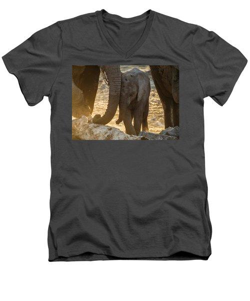 Tiny Trunk Men's V-Neck T-Shirt