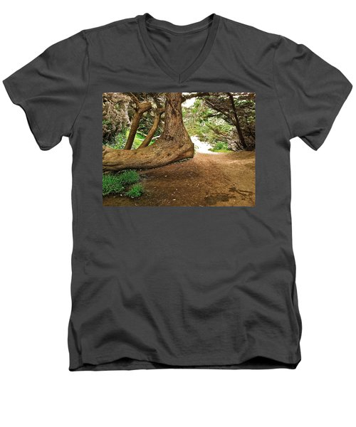 Men's V-Neck T-Shirt featuring the photograph Tree And Trail by Bill Owen