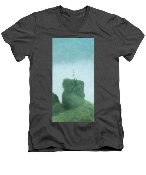 Tree At Iguazu Men's V-Neck T-Shirt