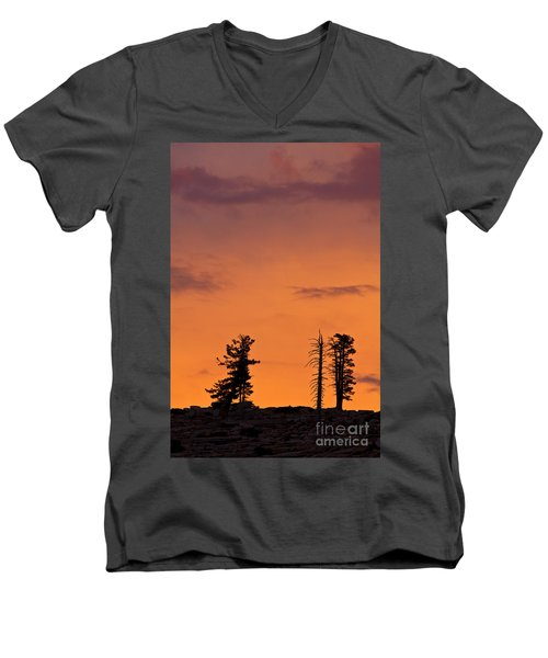 Trees At Sunset Men's V-Neck T-Shirt