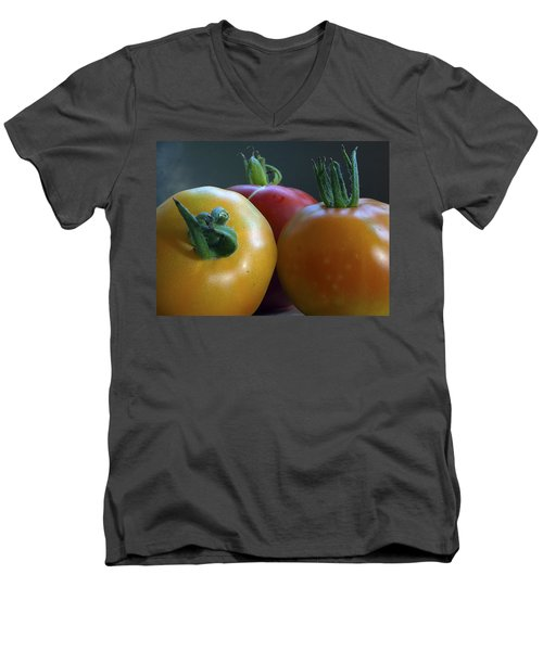Men's V-Neck T-Shirt featuring the photograph Tres Amigos by Joe Schofield