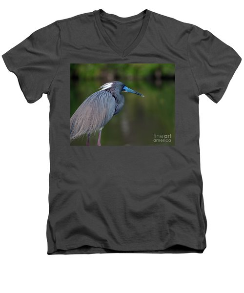 Tricolored Heron Men's V-Neck T-Shirt