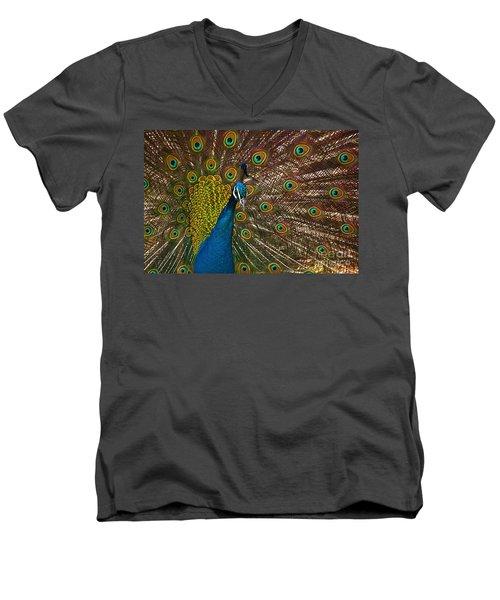 Turquoise And Gold Wonder Men's V-Neck T-Shirt