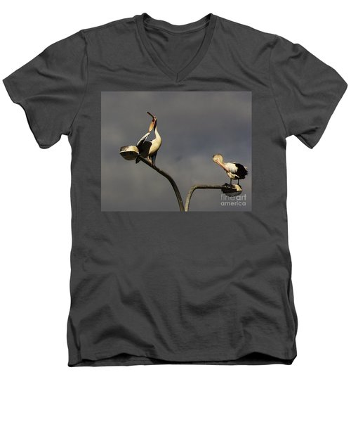 Men's V-Neck T-Shirt featuring the photograph Two On A Pole by Blair Stuart