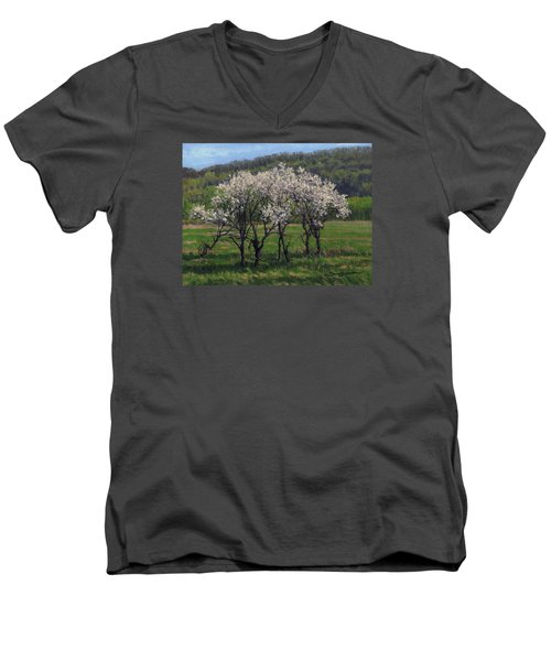 Valley Plum Thicket Men's V-Neck T-Shirt by Bruce Morrison