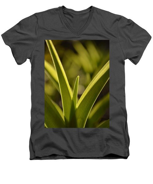 Variegated Light 1 Men's V-Neck T-Shirt