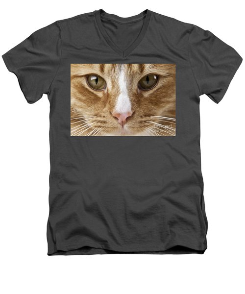 Watching And Waiting Men's V-Neck T-Shirt by Jeannette Hunt