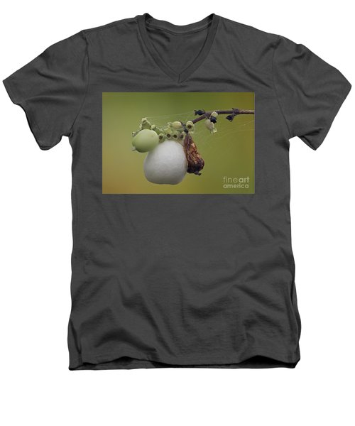 Men's V-Neck T-Shirt featuring the photograph Webbed Berry by Eunice Gibb