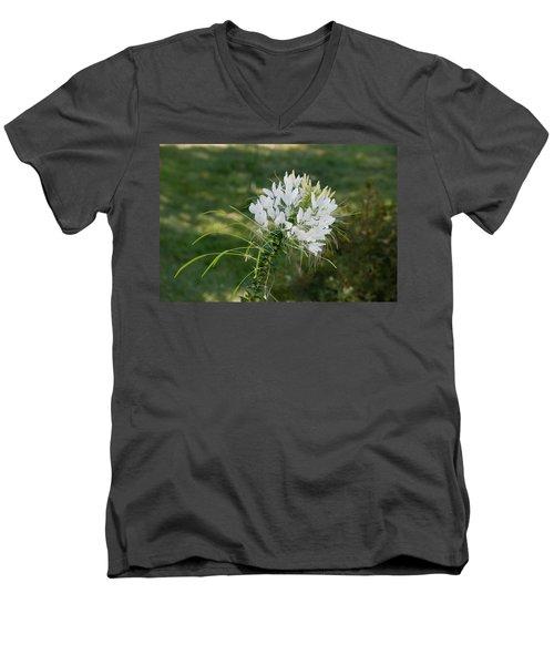 White Cleome Men's V-Neck T-Shirt by Michael Bessler