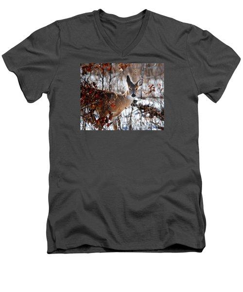 Whitetail Deer In Snow Men's V-Neck T-Shirt by Nava Thompson
