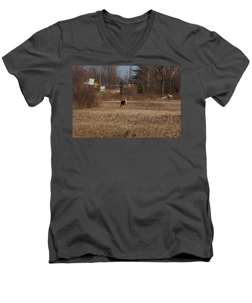 Whitetail Deer Men's V-Neck T-Shirt by Randy J Heath