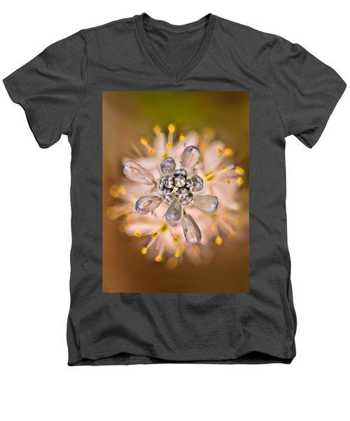 Wild Hyacinth Men's V-Neck T-Shirt