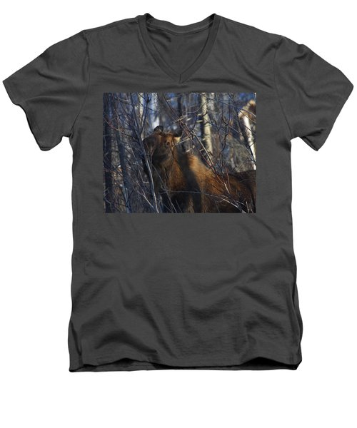 Men's V-Neck T-Shirt featuring the photograph Winter Food by Doug Lloyd
