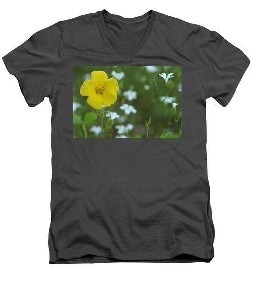 Wood Sorrel And Sandwort Men's V-Neck T-Shirt