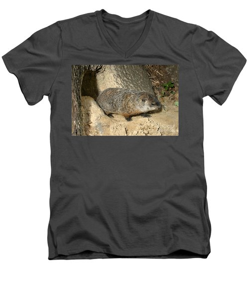 Woodchuck Men's V-Neck T-Shirt by Ted Kinsman
