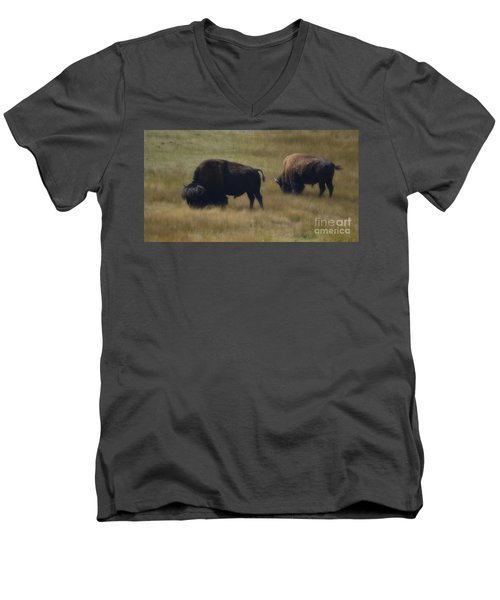 Wyoming Buffalo Men's V-Neck T-Shirt