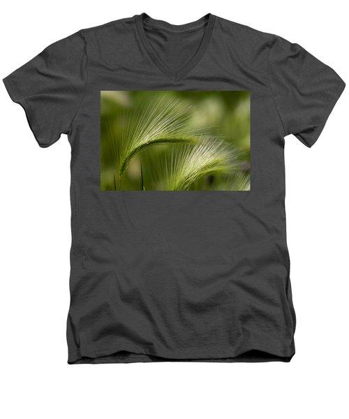 Wyoming Grassess Men's V-Neck T-Shirt by Rich Franco